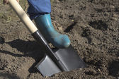 Digging the soil — Stock Photo