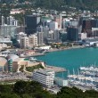 Wellington aerial view — Stock Photo #46191593