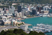 Wellington aerial view — Stock Photo