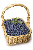 Blueberries in the basket isolated — Stock Photo