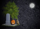 Textured black halloween background grave moon owl and pumpkin — Stock Photo
