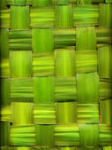 Background made of palm leaves — Stock Photo