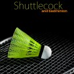 Постер, плакат: Shuttlecock and badminton