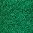 Green abrasive sponge - Stock Photo
