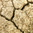 cracked earth soil. — 图库照片