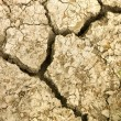 cracked earth soil. — Stock Photo