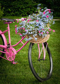 Flower Basket on Bike — Stock Photo
