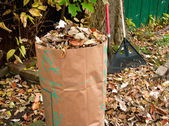 Rake and Bagging Leaves — Stock Photo