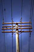 Power Line Pole — Stock Photo