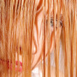Stok fotoğraf: Wet Blonde Hair