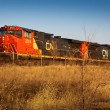 CN Railroad — Stock Photo