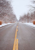 Winter Michigan Road — Stock Photo