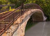 Puente del parque a pie — Foto de Stock