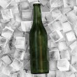 Bottle of Beer in Ice Cubes — Stock Photo #12208958