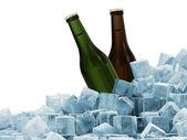 Flessen bier in ijsblokjes geïsoleerd op witte achtergrond — Stockfoto