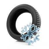 Winter Car Tire isolated on white background — Stock Photo