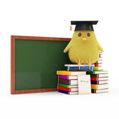 Little Chicken Siting on Books near the Blank Chalkboard isolated on white background — Stock Photo
