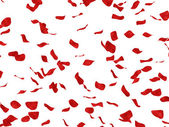 Repeatable rose petals — Stock Photo