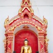 Golden Buddhas Images, Thailand — Stock Photo #12134275