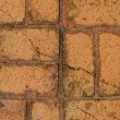 Brick walls — Stock Photo #12280199
