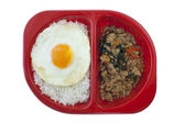 Steamed rice with fried egg — Stock Photo