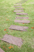 Stone path in tropical garden — Stock Photo