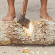 Msplitting wood with ax — Stock Photo #26998671