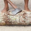 Msplitting wood with ax — Stock Photo #27061797