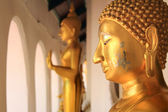 Buddha statue at Phra Prathom Jedi, Thailand — Photo