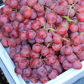 Seedless Red Grapes — Stock Photo