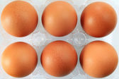 Eggs packed — Stock Photo