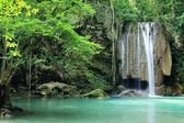 Deep forest waterfall — Stock Photo