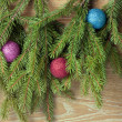 Colored balls are on the fir trees — Stock Photo