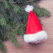 Santa's hat hanging on fir branches — Stock Photo #22405615