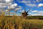 Field mill — Stock Photo