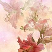 Floral design vintage — Stock Photo