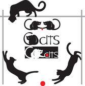 Set cats — Stock Vector