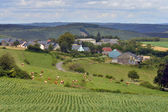 Luxembourgish landscape — Stock Photo