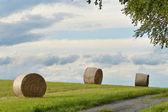 干し草の俵 — ストック写真