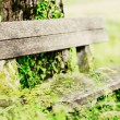 Old wooden Bench — Stock Photo #12071830