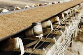 Conveyor belt — Stock Photo