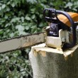 Chainsaw — Stock Photo #18328875