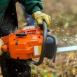 Chainsaw — Stock Photo #21192949
