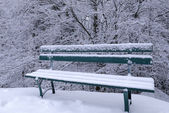Snowy bench — Stock Photo