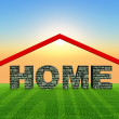 Home — Stock Photo #31121565