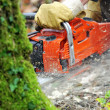 Chainsaw — Stock Photo #41597279