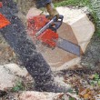 Chainsaw — Stock Photo #41597577