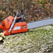 Chainsaw — Stock Photo #41600101