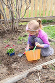 Spring gardening — Stock Photo