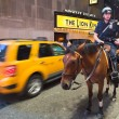 Stock Photo: NEW YORK CITY, US- Police officer rides his horse
